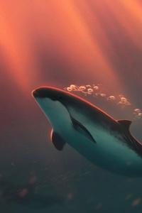 480x854 Dolphin Bubbles 4k