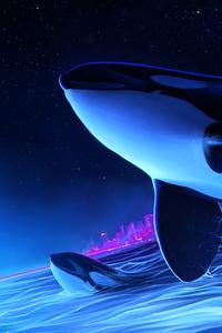 Dolphin Night Orca Whale Digital Art