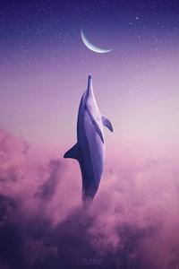 Dolphin Touching Moon 4k