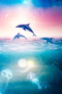 Dolphins Digital Art 4k