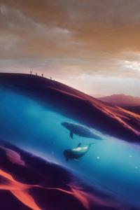 1242x2688 Dolphins In Desert 4k