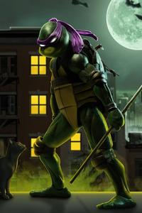 540x960 Donatello Teenage Mutant Ninja Turtles 5k