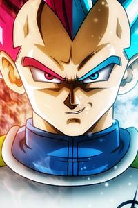 320x568 Dragon Ball Super Anime 5k