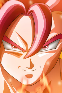 800x1280 Dragon Ball Super Dbs 5k