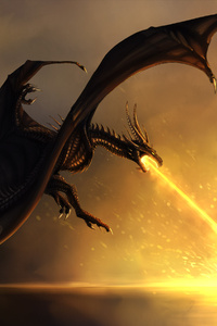 Dragon Burning Flames