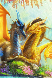 480x800 Dragon Couple Paradise 4k