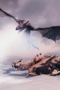 540x960 Dragon Fantasy