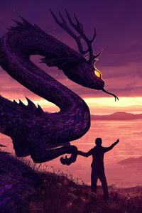 Dragon Training 4k