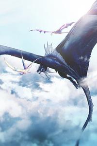 Dragons Morning Ride 4k