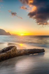 Driftwood On Beach At Sunset On North Shore Of Kauai 8k