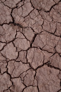 Drought Earth Desert
