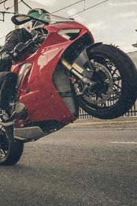 1440x2560 Ducati 4k 2019