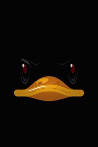 480x854 Duck Minimal 4k