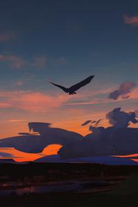 720x1280 Eagle In Sky 5k