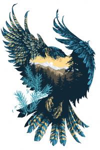 720x1280 Eagle Minimal 4k