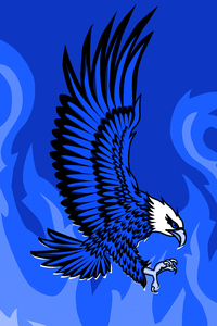 1440x2960 Eagle Of Flames 5k
