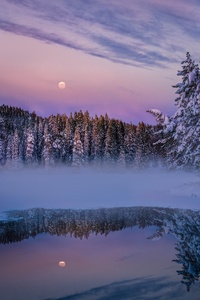 Earth Winter Fog Snow Trees Lake