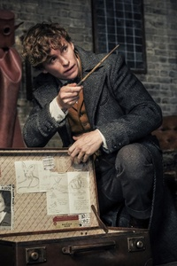 Eddie Redmayne As Newt Scamander In Fantastic Beasts The Crimes Of Grindlewald