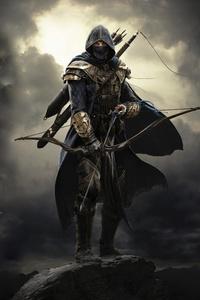 240x400 Elder Scrolls Online Warrior