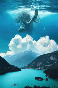 1125x2436 Elephant Under Water Manipulation 4k
