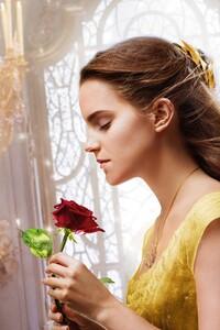 320x480 Emma Watson Beauty And The Beast 5k Hd