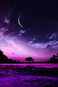 640x1136 Evening Mood Pink 5k