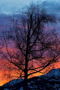 Evening Sunrise Morning Beautiful Nature