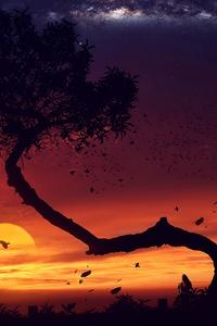 1440x2560 Evening Tree Sunset Digital Art