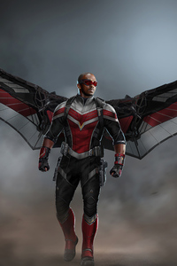 Falcon With Wings 4k