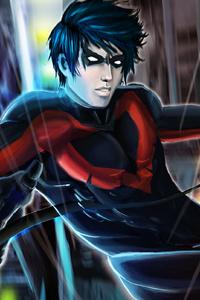 Fallen Nightwing