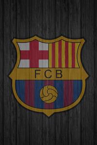 2160x3840 Fcb Logo