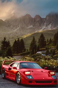720x1280 Ferrari F40 In Nature 5k