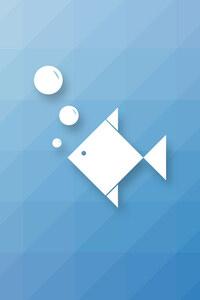 Fish Minimalism