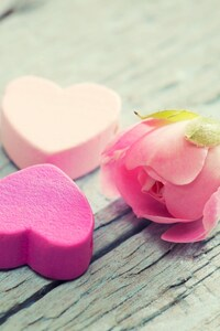 2160x3840 Flowers Love