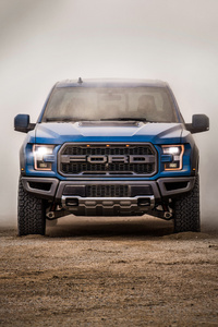 Ford F 150 Raptor SuperCrew 2018