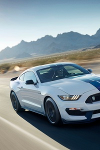 Ford Mustang 10k