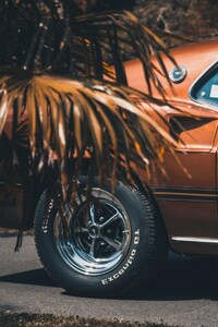 320x480 Ford Mustang 1969
