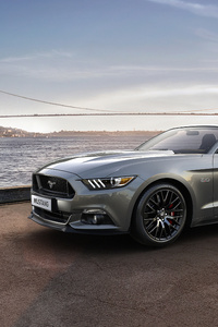 540x960 Ford Mustang 4k New 2019