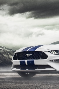 Ford Mustang 5k New