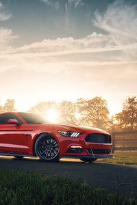 360x640 Ford Mustang GT 4k 2019