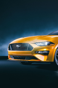 1125x2436 Ford Mustang GT 4k Front