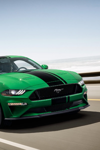 2160x3840 Ford Mustang GT Fastback 2018