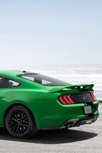 Ford Mustang GT Fastback 2018 Rear