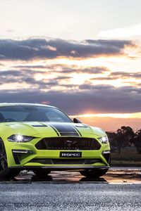 320x568 Ford Mustang GT Fastback 2019