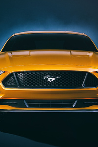Ford Mustang GT Front 4k