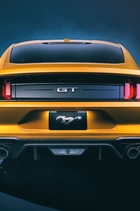 1125x2436 Ford Mustang GT Rear 4k