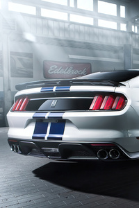 Ford Mustang GT350 2021