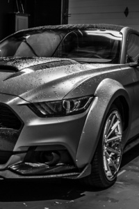 640x960 Ford Mustang Monochrome 4k