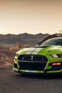1242x2688 Ford Mustang Shelby GT500 Usa