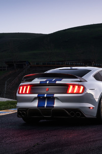 Ford Shelby GT350 Rear